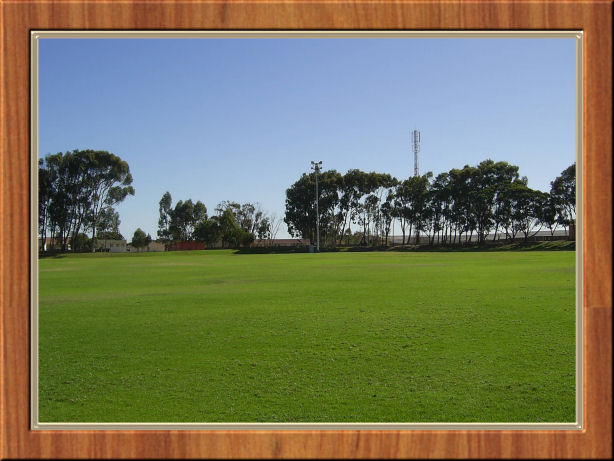 The Cricket Field